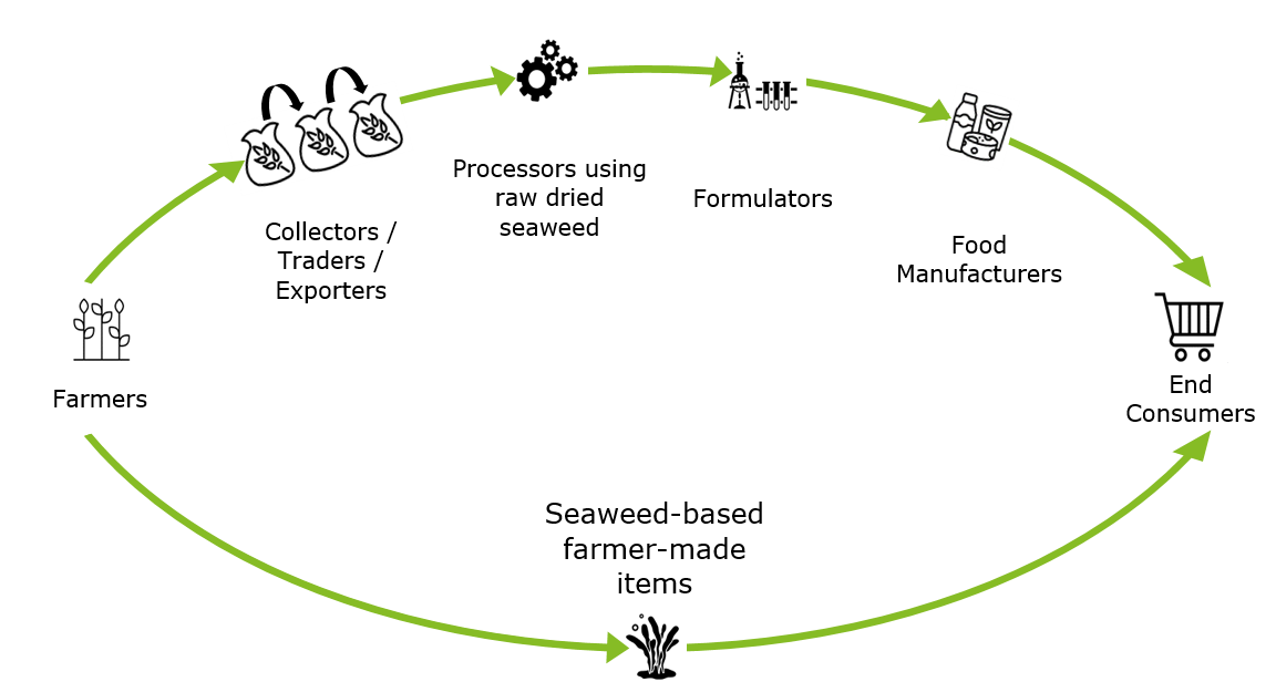 Typical Seaweed Value Chain