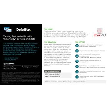 SAP: Case studies   Deloitte   Technology services
