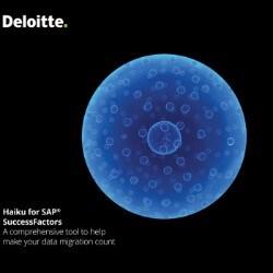 SAP: Human Capital Management | Deloitte Malta | Technology