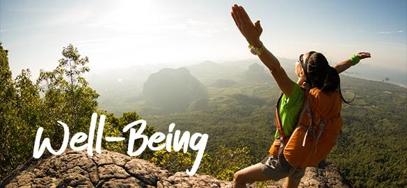 Well-being Deloitte