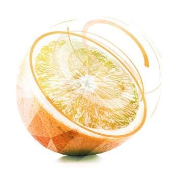Future of Fresh Food Supply Chain   Deloitte US