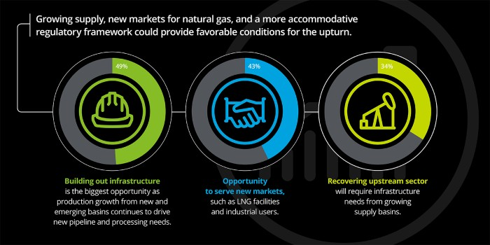 2017 oil and gas industry executive survey analysis