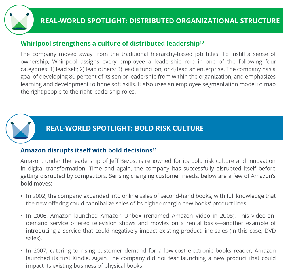 Global Real-world spotlight: Distributed Organizational Structure & Bold Risk Culture
