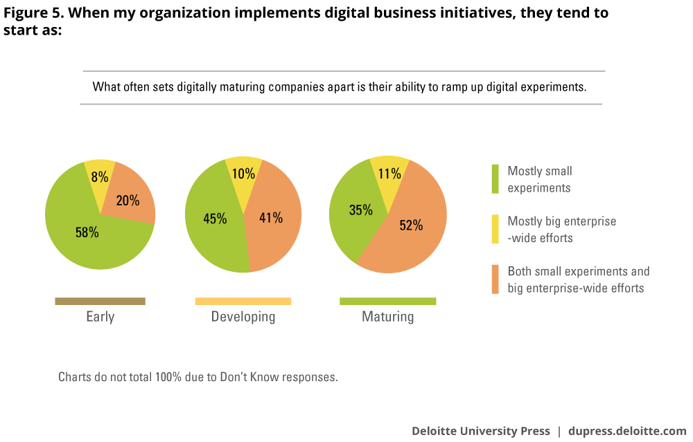 When my organization implements digital business initiatives, they tend to start as: