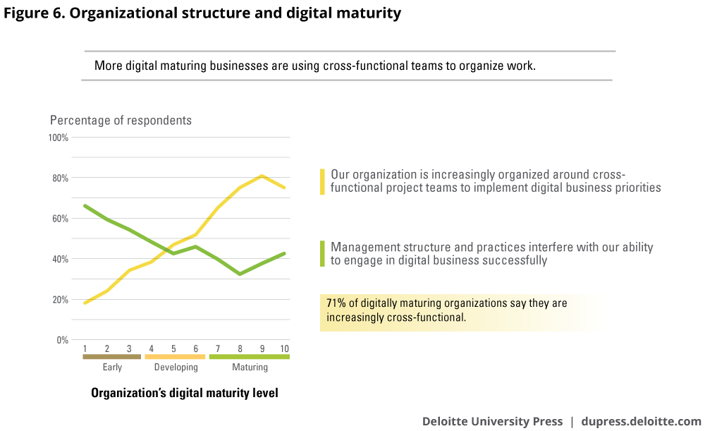 Organizational structure and digital maturity