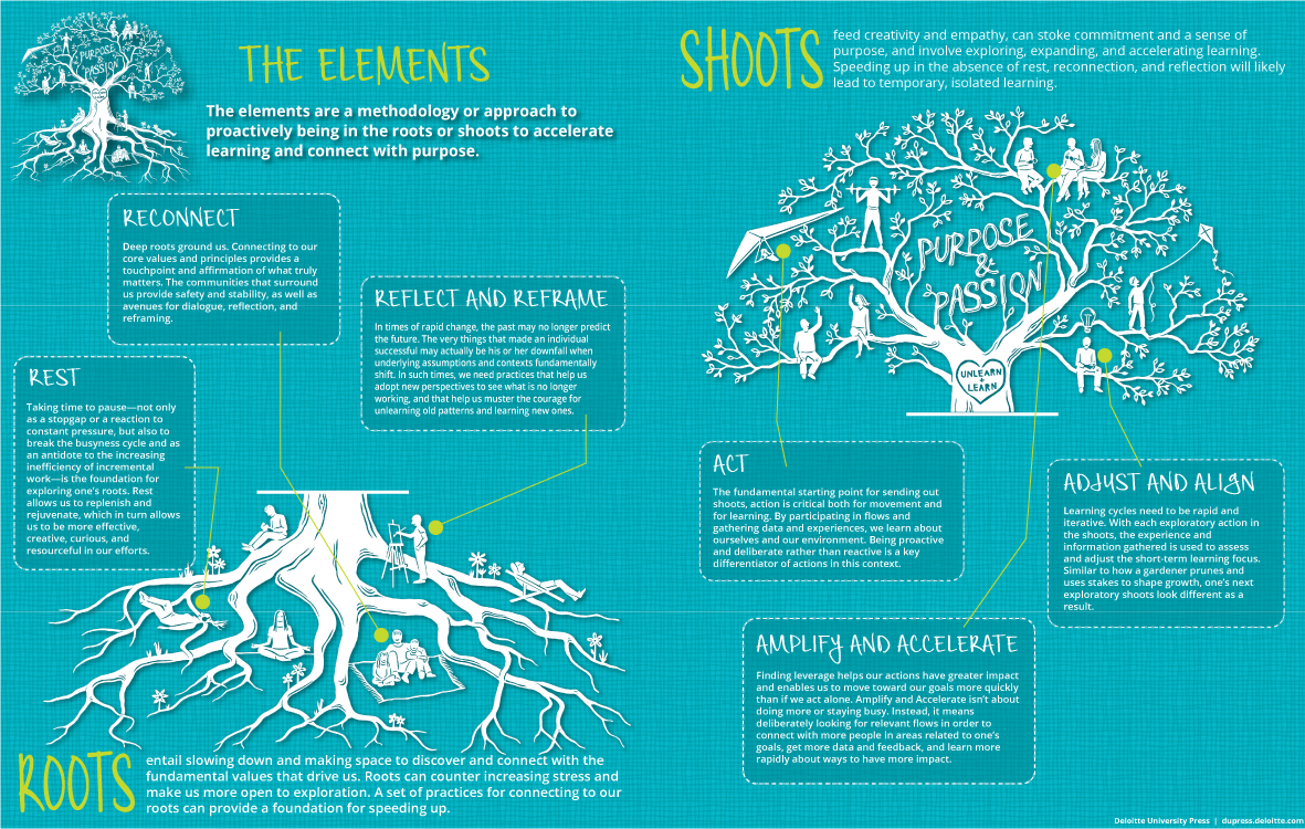 "The elements: ""How"" learning happens in the Roots and Shoots cycle"