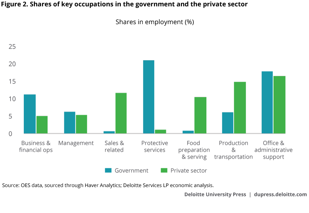Shares of key occupations in the government and the private sector