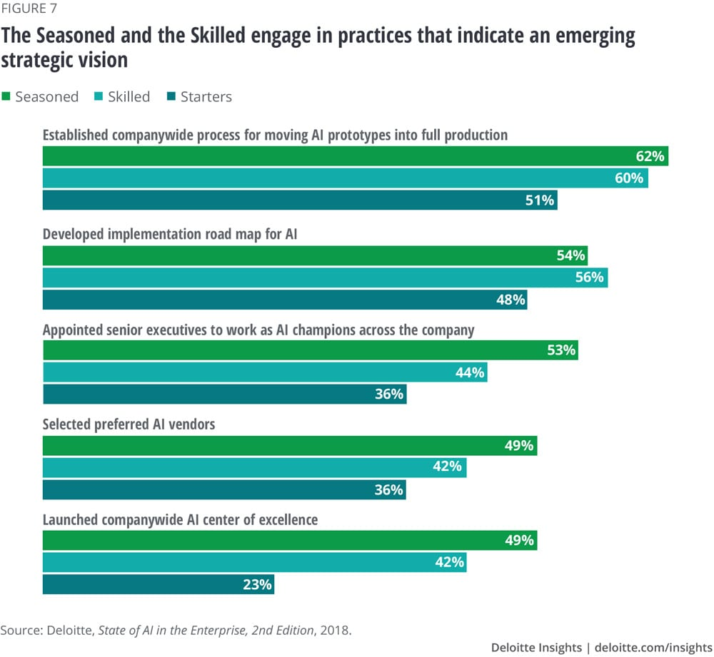 The Seasoned and the Skilled engage in practices that indicate an emerging strategic vision