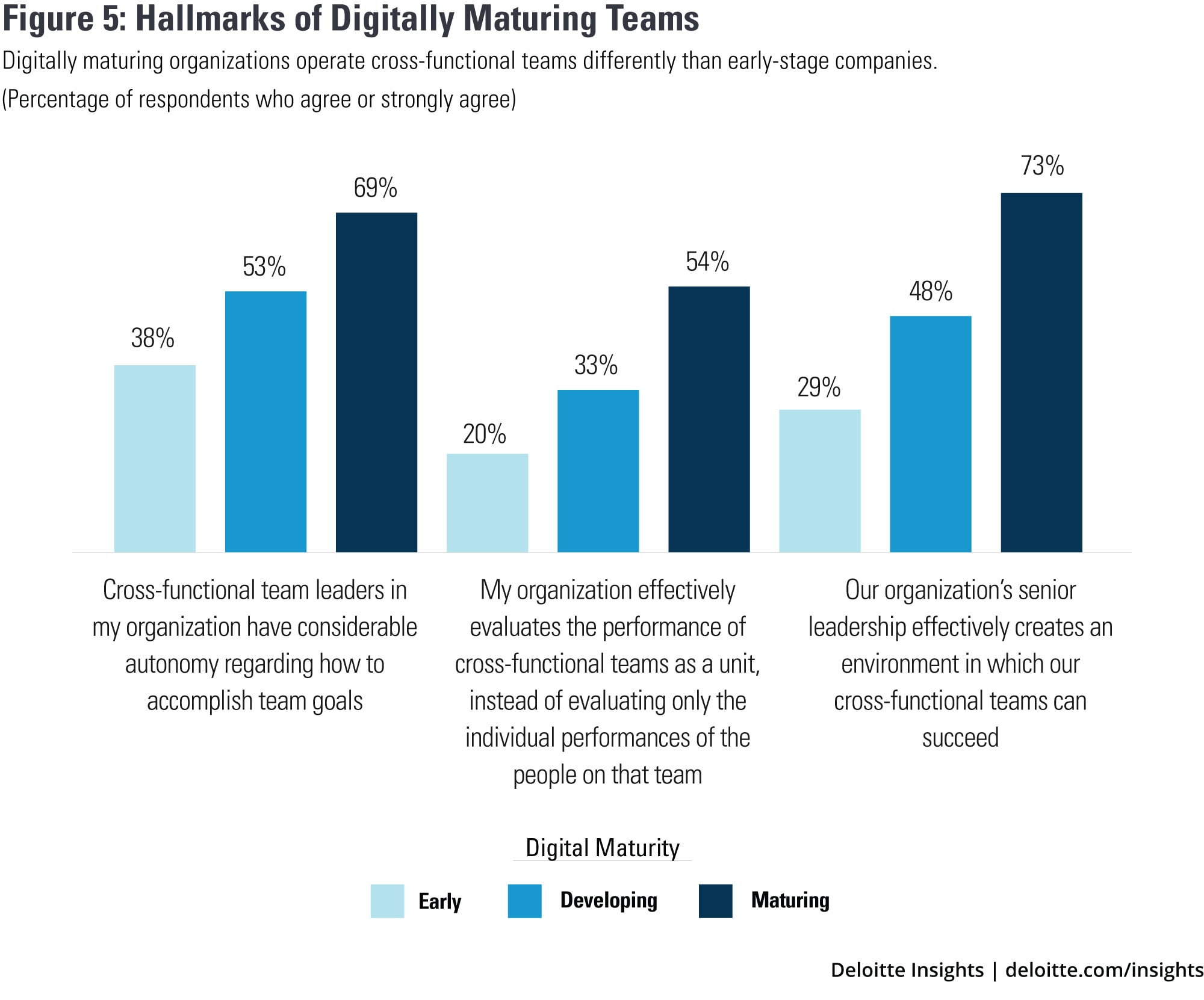 Hallmarks of digitally maturing teams