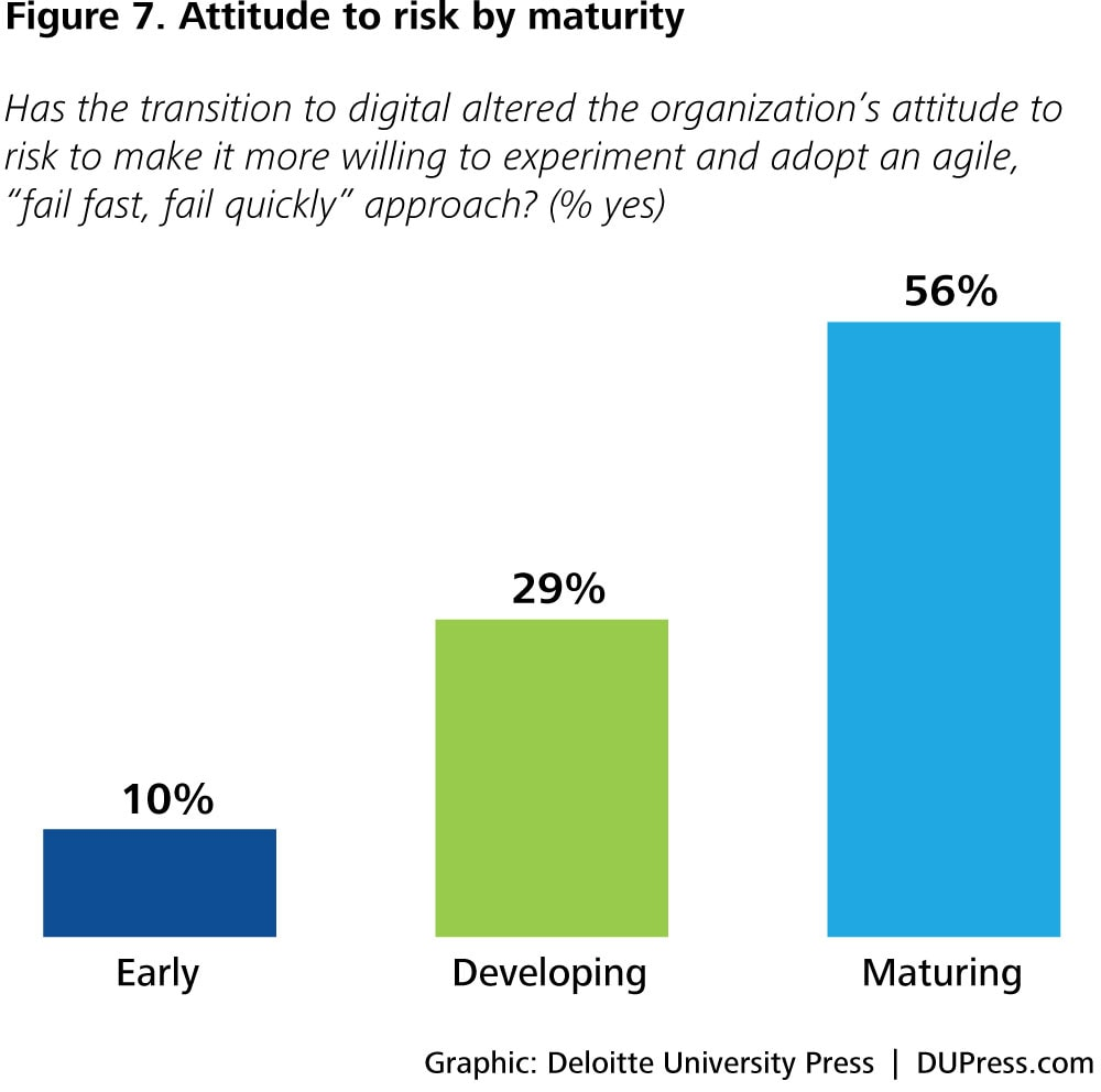 DUP1424_Figure 7. Attitude to risk by maturity