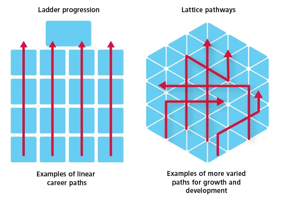 Ladder progression is very linear. Lattice pathways allow for more varied paths to growth and development.